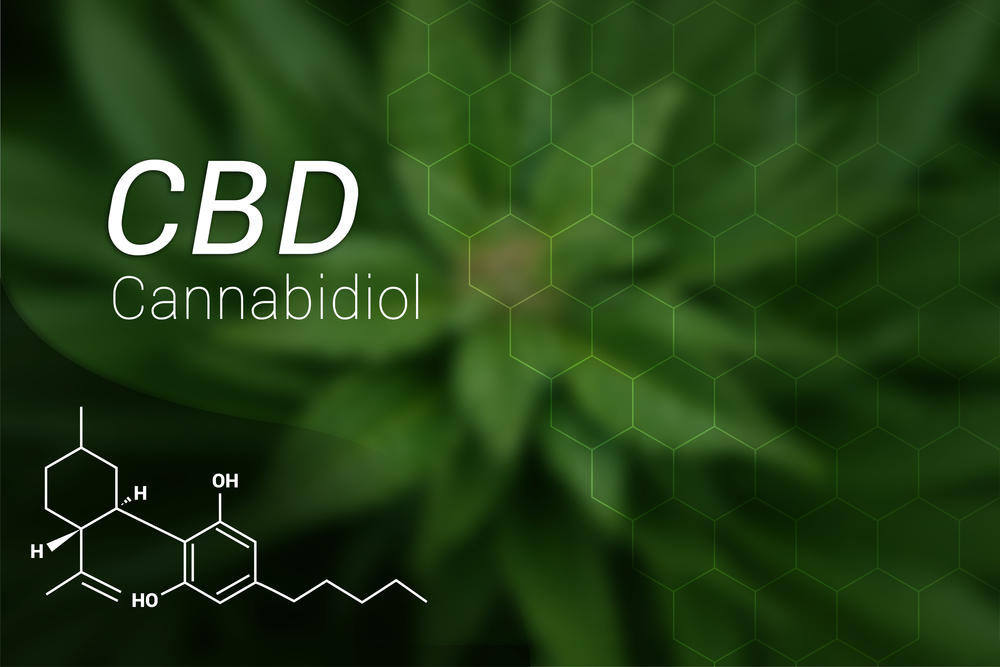 A Guide for Using CBD Supplements to Lower Your Stress Levels